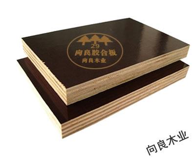 棕色覆膜板(进口)